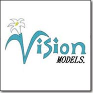 Vision Model