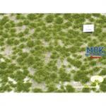 Grasbüschel, kurz, Frühherbst, 42x15cm