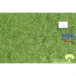 Heideboden, Sommer, 31x50cm
