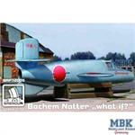 Bachem Ba 349A 'Natter'