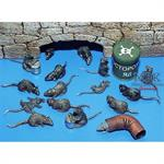 Ratten Set