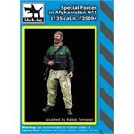 Special forces in Afghanistan N°1