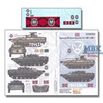 Novorossian AFV Ukraine-Russia Crisis 7 BMP1  BMP2
