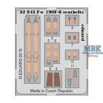 FW 190F-8  seatbelts