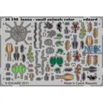 Fauna series - small animals