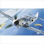 Messerschmitt BF-109 G-6