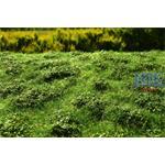 Wiese mit Gebüsch Sommer/Low bushes Summer 29x19