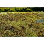 Wiese mit Gebüsch Herbst/Low bushes Autumn 29x19
