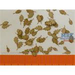 Eicheblätter Trocken / Oak leaves dry 1/35
