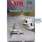 Tierschädel/ Animal Skulls (2 Stück)