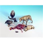 Animals - Set 13