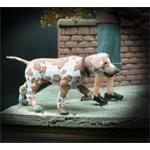 Hund, the dog 1:35