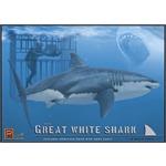 Der weiße Hai & Taucher Great White Shark & Diver
