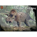 Triceratops Dinosaur Three-Horned Face