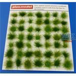 Tufts grass-green  / Büschel Gras - Grün