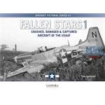 Fallen Stars 1