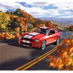 2010 Ford Shelby GT 500 - Model Set