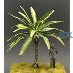 Medium Palm tree large leaves - 14cm