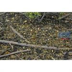 Nature-in-a-Pot - Fine Dark Forest Scatter