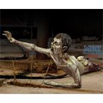 Zombie-/half body (Zombie series 1:35)