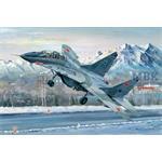 Russian MIG-29B Fulcrum