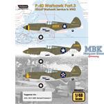 USAAF Warhawk Service in WW2