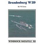 Hansa Brandenburg W.29