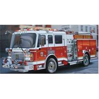 Rescue Service (Fire Brigade / Police)
