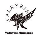 VALKYRIE MODELS