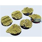 Temple Bases, Round 40mm