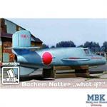 "Bachem Ba 349A 'Natter' ""What if?"""