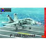 F-18B Hornet 'Low-vis'