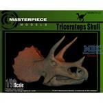 Triceratops skull/ Triceratops Schädel 1:9