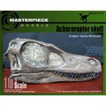 Acheroraptor Skull/ Acheroraptor Schädel 1:1