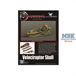 Velociraptor Skull/ Velociraptor Schädel 1:1
