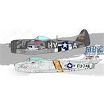 """P-47D & F-86E """"GABRESKI"""""""