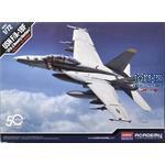 "USN F/A-18F VFA-2  ""Bounty Hunters"""