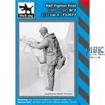 RAF Pilots 1940-1945  Set No. 7