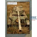 Blue Steel 5 AMX-13 in Lebanon
