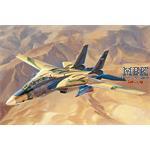 """""""Persian Cat"""" F-14A TomCat - IRIAF"""