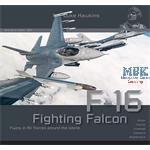Duke Hawkins: Lockheed-Martin F-16 Fighting Falcon