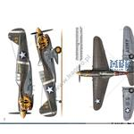 Camouflage & Decals - Curtiss P-40