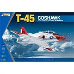 """T-45 """"Goshawk"""" Navy Jet Trainer"""