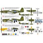"P-51B ""Mustang Malcolm"""
