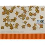 Ahorn extra Farben herbst/ Maple leaves autum 1/35
