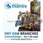 Dry oak branches / vertrocknete Eichenzweige