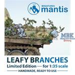 Leafy branches / Laubzweige