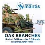 Oak branches / Eichenzweige