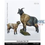 Animals Set 38