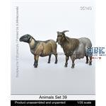 Animals Set 39